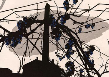 Виставка робіт закарпатських художниць «Верета» у Острозі